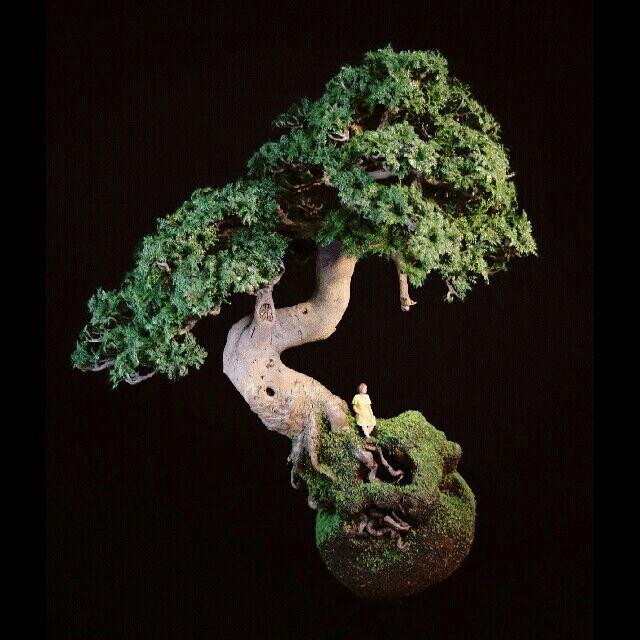 "Patrick Bergsma ""Roots"""