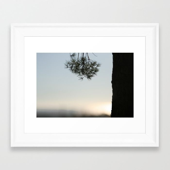 Pine tree trunk and branch Framed Art Print | Trees | Pinterest ...