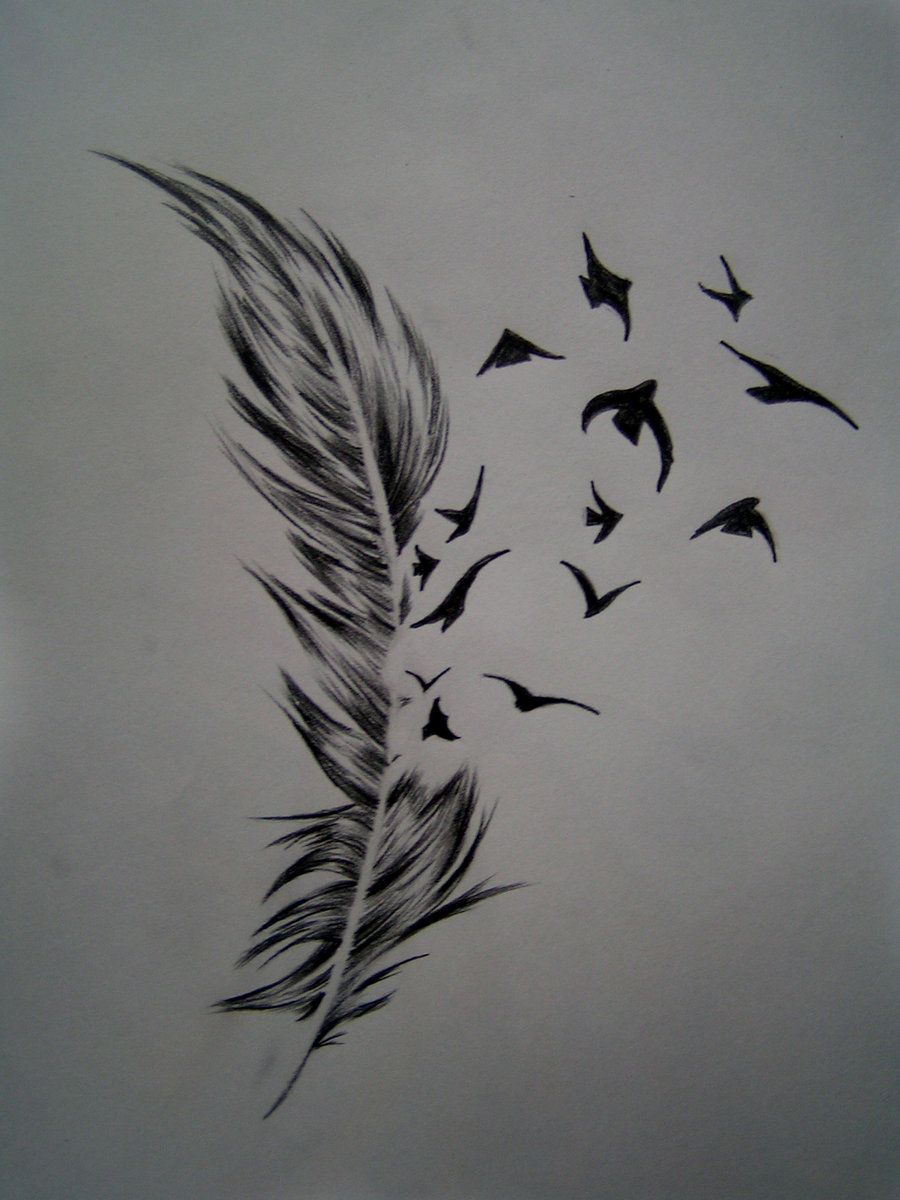 Feather And Birds By Frontside92 On Deviantart Feather With Birds Tattoo Feather Tattoo Design Feather Tattoo Meaning