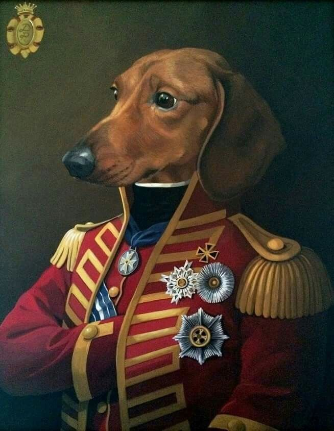 Dachshund Pictures Dog Art Dog Paintings Dachshund Art