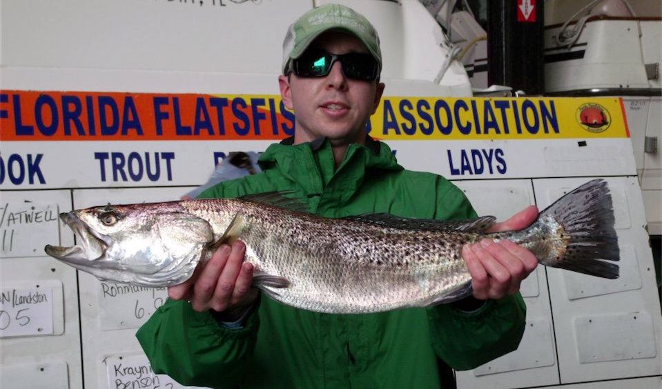 how to catch redfish in the surf