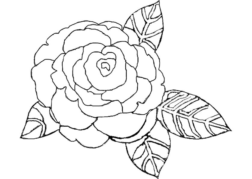 eine rose f r malen basteln pinterest eine rose. Black Bedroom Furniture Sets. Home Design Ideas