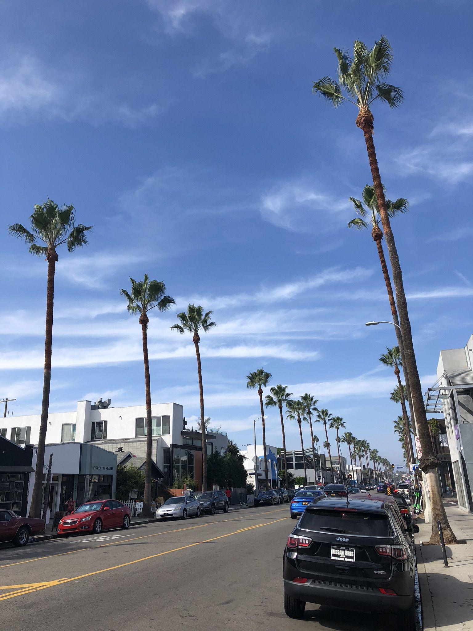 Abbot Kinney Boulevard Los Angeles Venice Beach Los Angeles Los Angeles Venice Beach