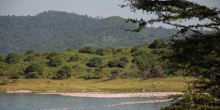 Arusha Nationalpark, Arusha, Tanzania