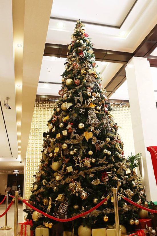 Christmas Tree In Wafi City Dubai Kerstmis Steden Kerstboom