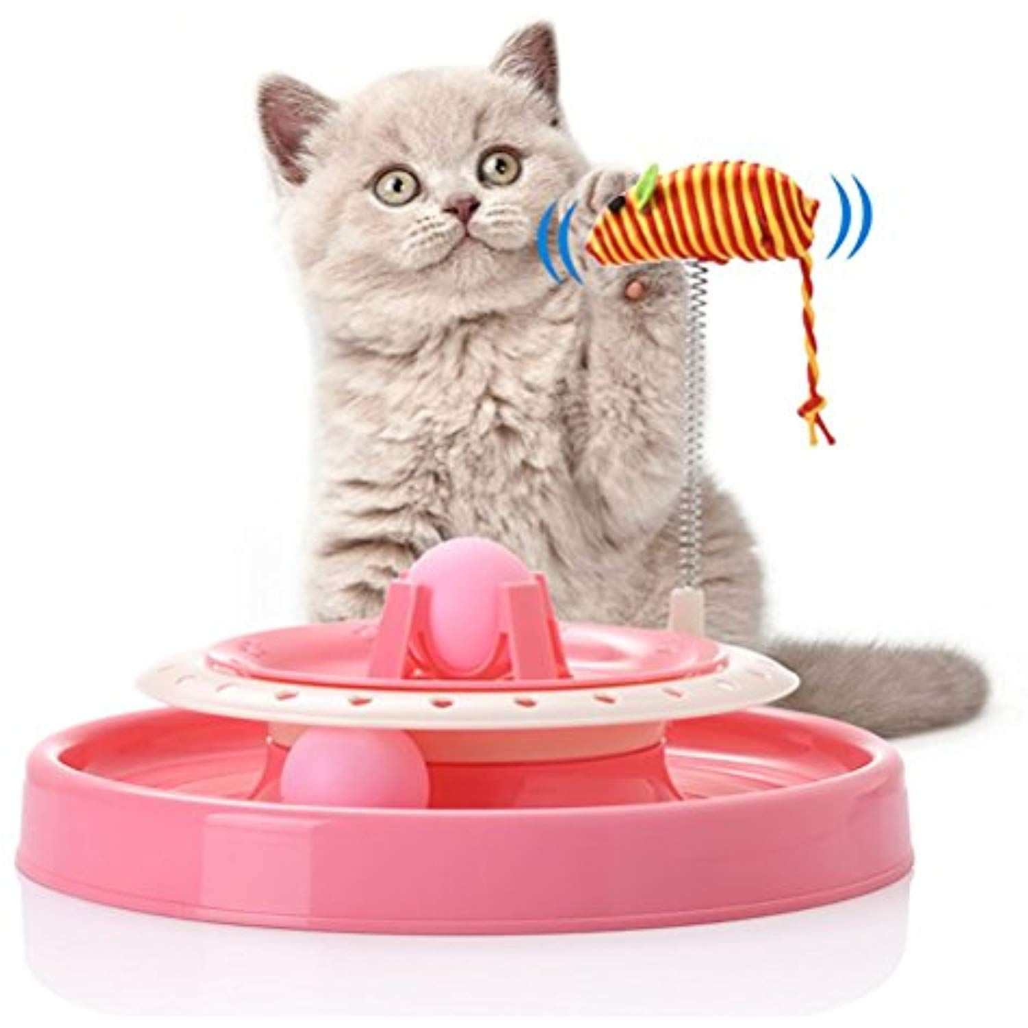 Dan Amazing Cat Roller Toy By Ball And Track Toy Endless Interactive Play And Mental Physical Exercise For Kittens Click On T Pet Toys Cat Toys Pet Cat Toys
