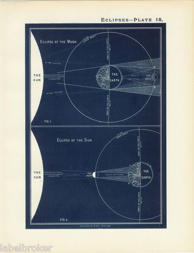 Antique Print Vintage 1800s Astronomy Science Star Chart Map ...