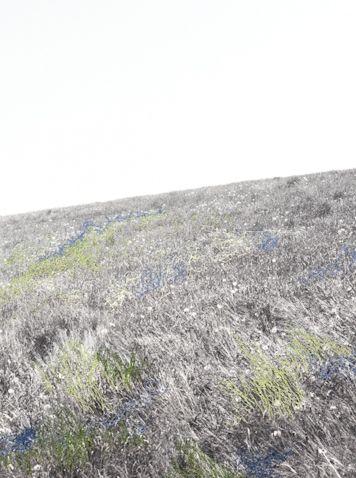 Iris hutegger,  Landschaften