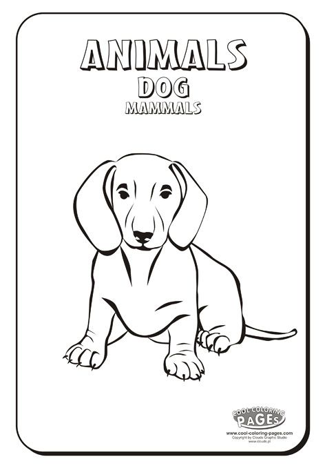 Dog - Coloring Animals ::: COOL COLORING PAGES - free educational ...