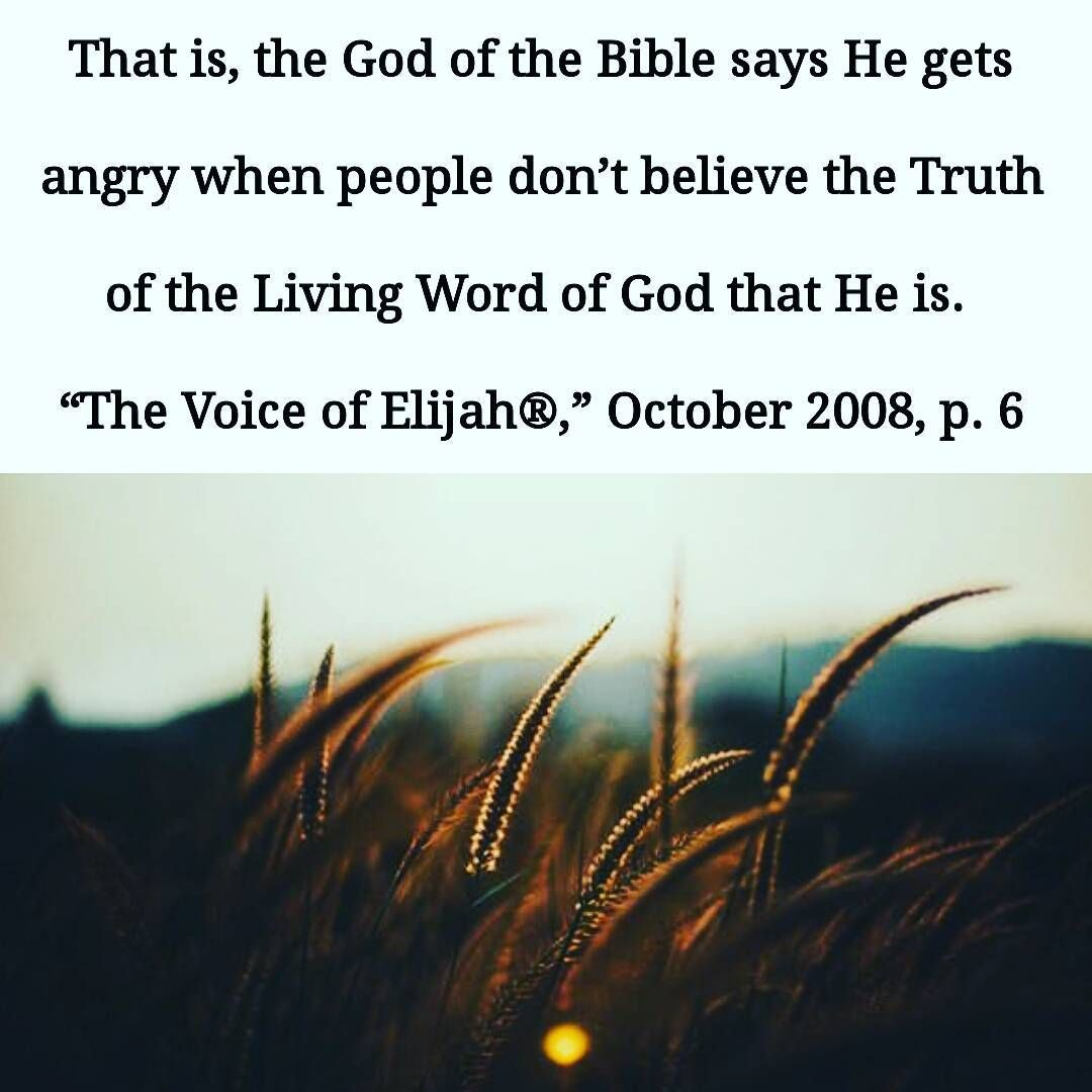#bible #biblestudy #thetruth #thevoiceofelijah | Truth and ...
