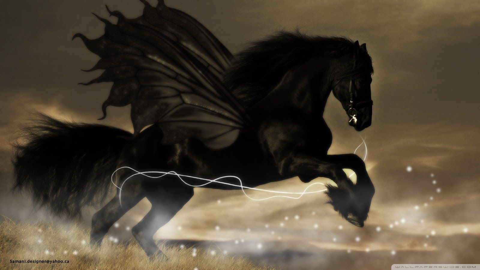 Black Horse Wallpapers Beautiful Acterss Wallpapers Hd Horse Wallpaper Horses Fantasy Horses