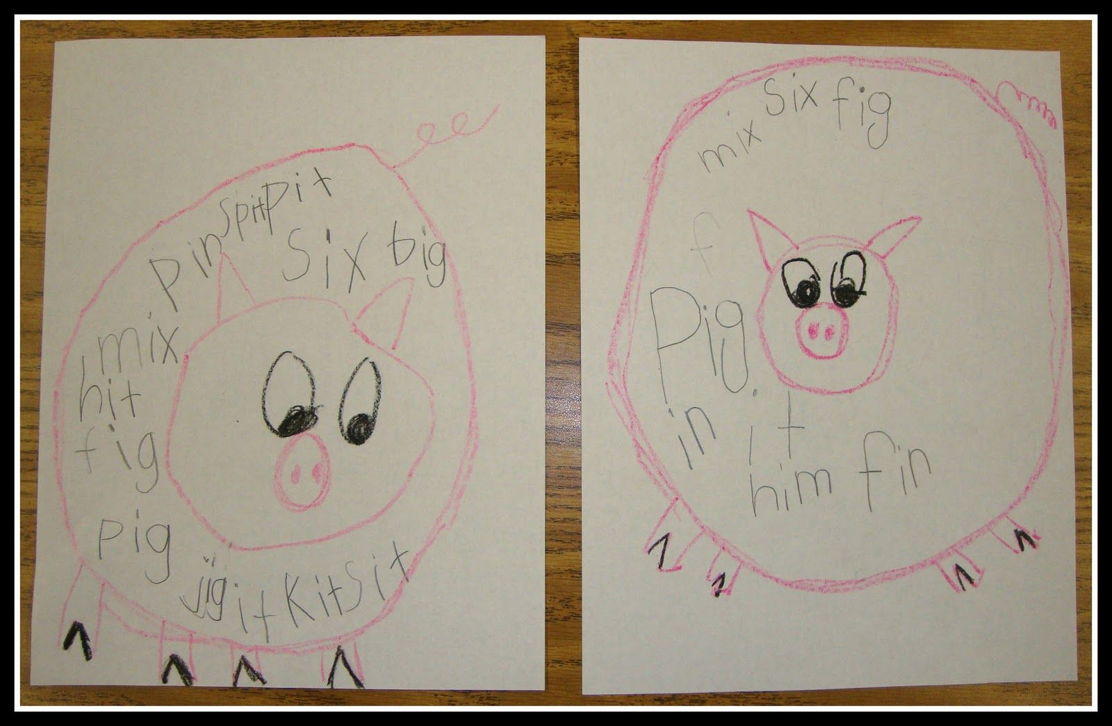 Today In First Grade Short I Pigs