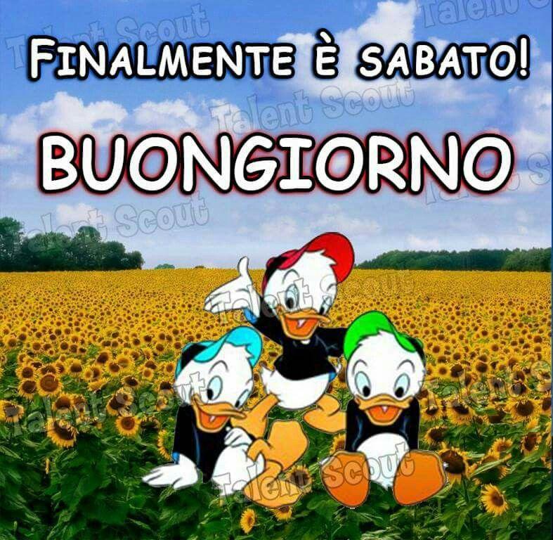 Sabato sms buon pomeriggio pinterest sabato for Buongiorno divertente sms