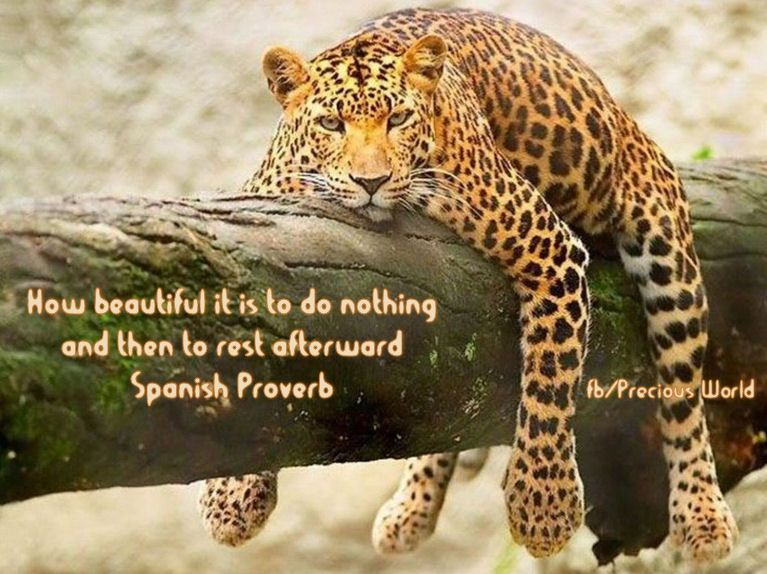 How beautiful it is to do nothing  and then to rest afterward. ~ Spanish Proverb
