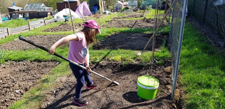 A Complete Guide To Starting An Allotment Gardening For