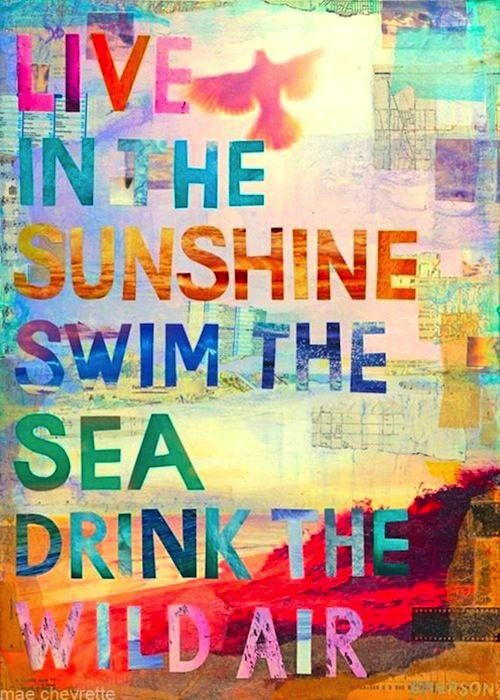 Live In The Sunshine Swim The Sea Drink The Wild Air ~ Best Quotes U0026  Sayings. Quote By Ralph Waldo Emerson