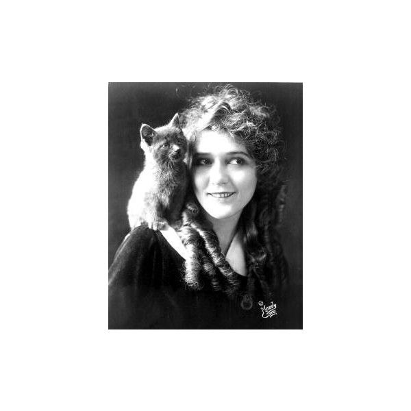 mary pickford and a kitten ❤ liked on Polyvore featuring home, home decor, pictures, b&w, cats, people and cat home decor