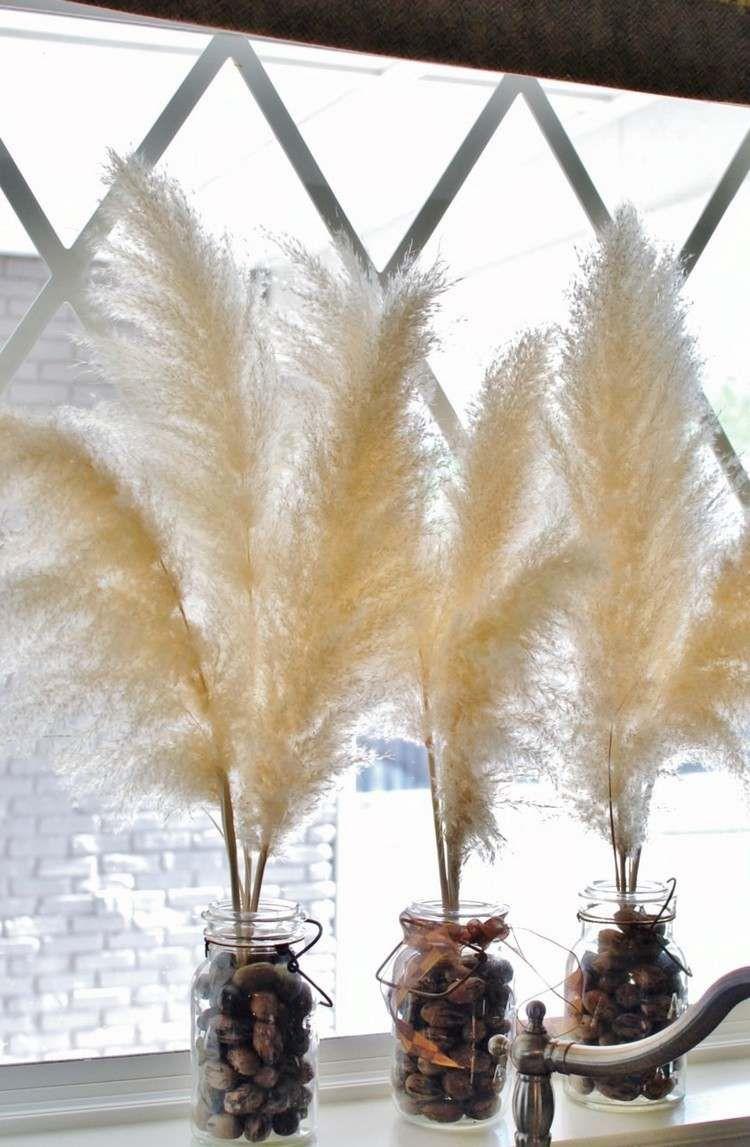 herbe de la pampa s ch e une plante ornementale pour une d co insolite gramin s pampas grass. Black Bedroom Furniture Sets. Home Design Ideas
