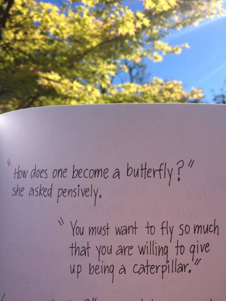 How Does One Become A Butterfly From Hope For The Flowers By