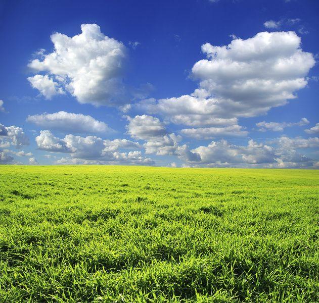 55 No Shoes In Green Grass Landscape Pictures Landscape Landscape Photos