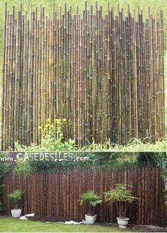 Cloture bambou irregulier à Prix Canon : Clôture bambou naturel ...