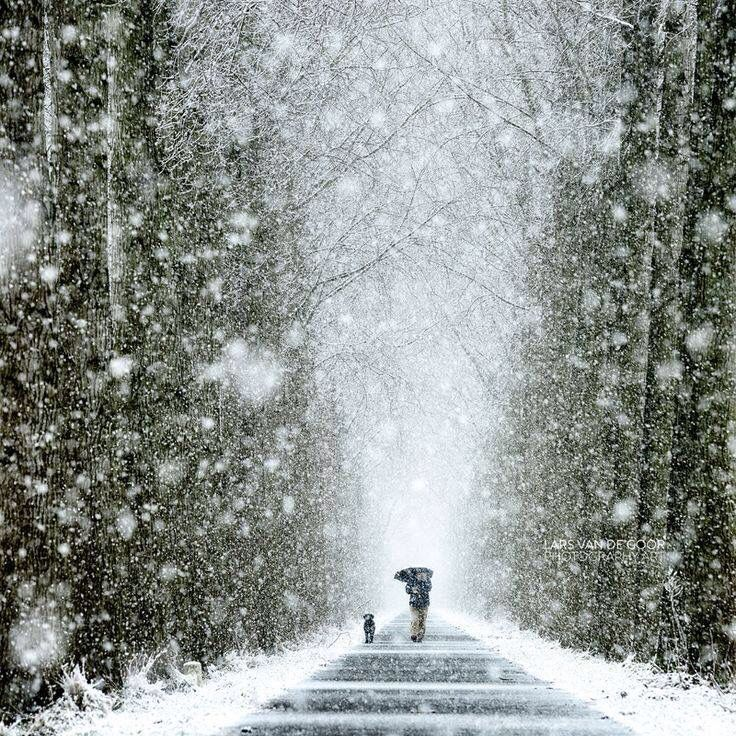 Winter Pictures found on the web that I find really interesting