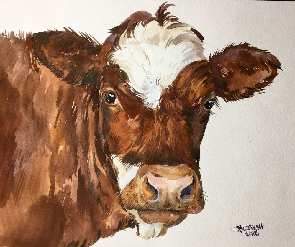 Rusty Brown Cow Portrait Farm Animal Farm Art Original