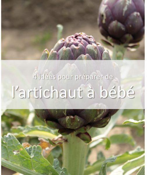 Artichaut pour b b des id es pour le cuisiner lors de la - Cuisiner les legumes sans matiere grasse ...