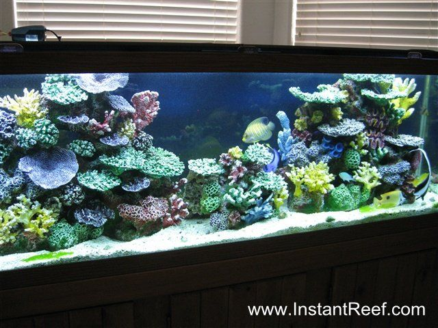 Instant Reef Aquarium Decor For Saltwater Freshwater Fish Saltwater Fish Tanks Aquarium Fish Tank Saltwater Aquarium