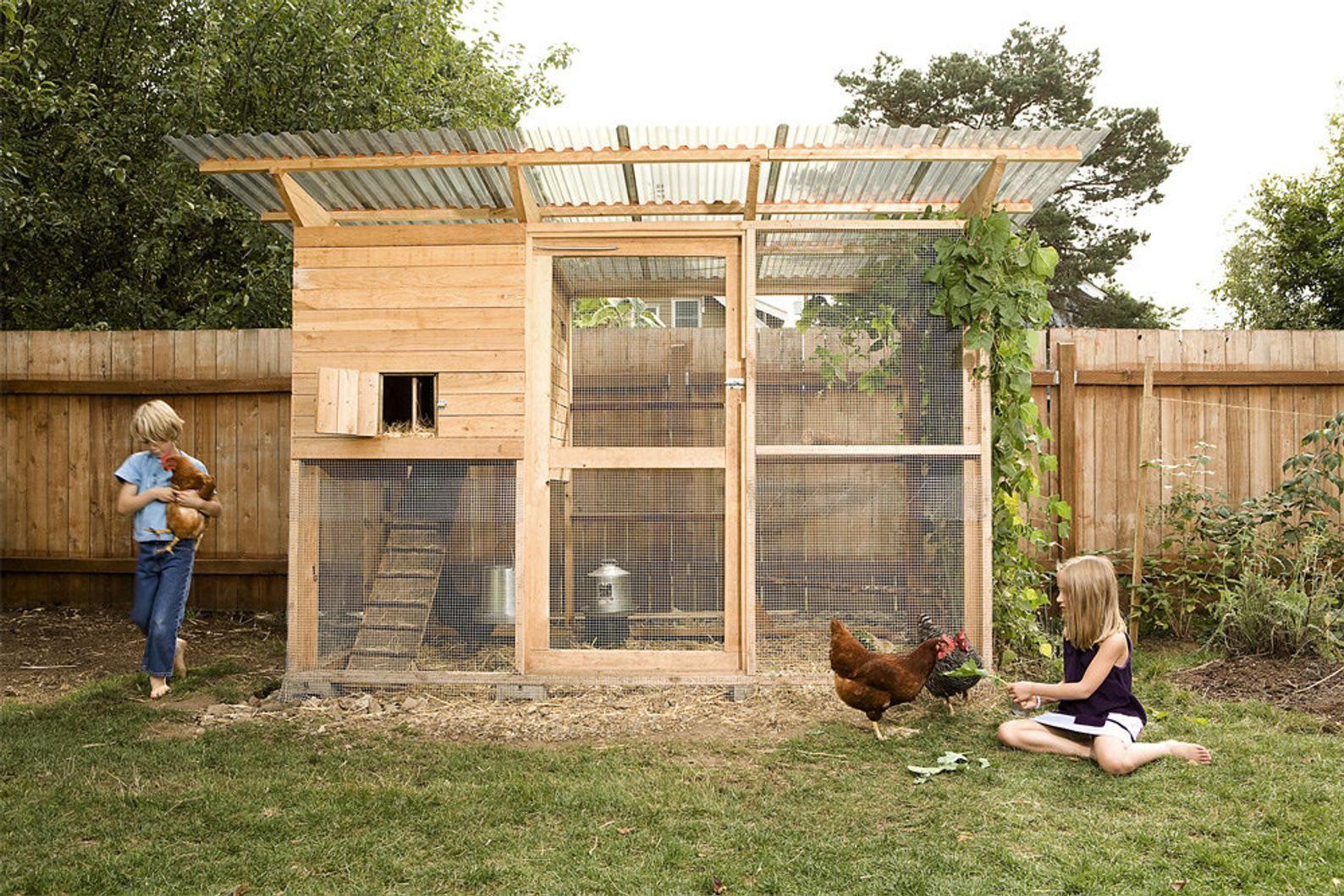 The Garden Coop Walk In Chicken Coop Plan Ebook Pdf Instant Etsy In 2021 Walk In Chicken Coop Easy Chicken Coop Chickens Backyard Backyard poultry house design