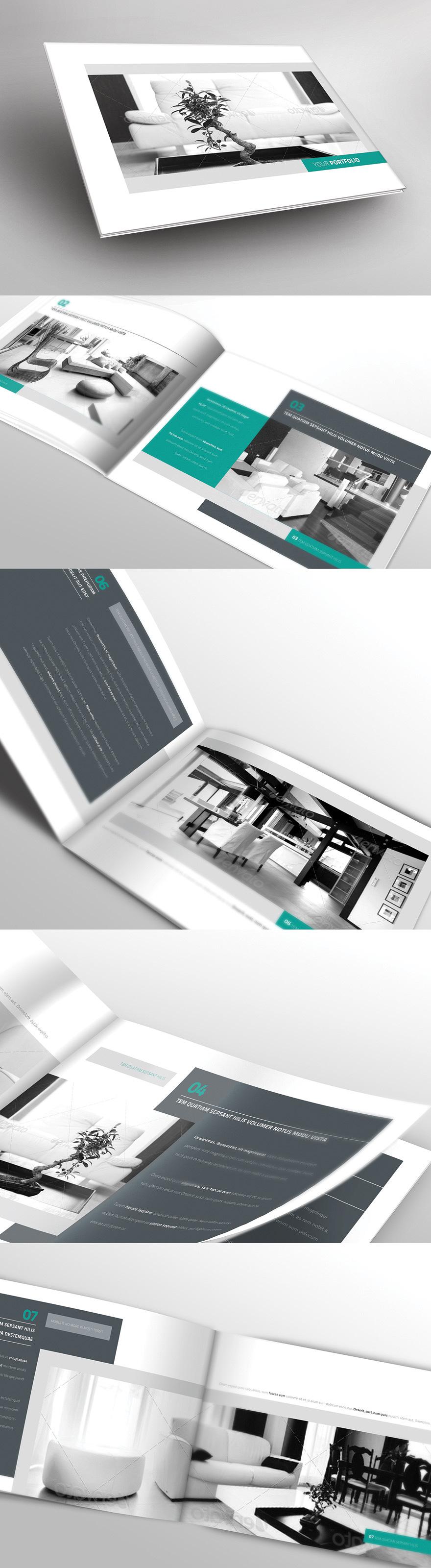 portfolio brochure   web design