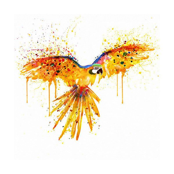 Flying parrot Watercolor painting Wall decor Bird art Splashes ...