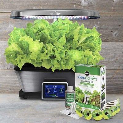 Aerogarden 9 Pod Seed Kit Salad Greens Seeds Fresh 400 x 300