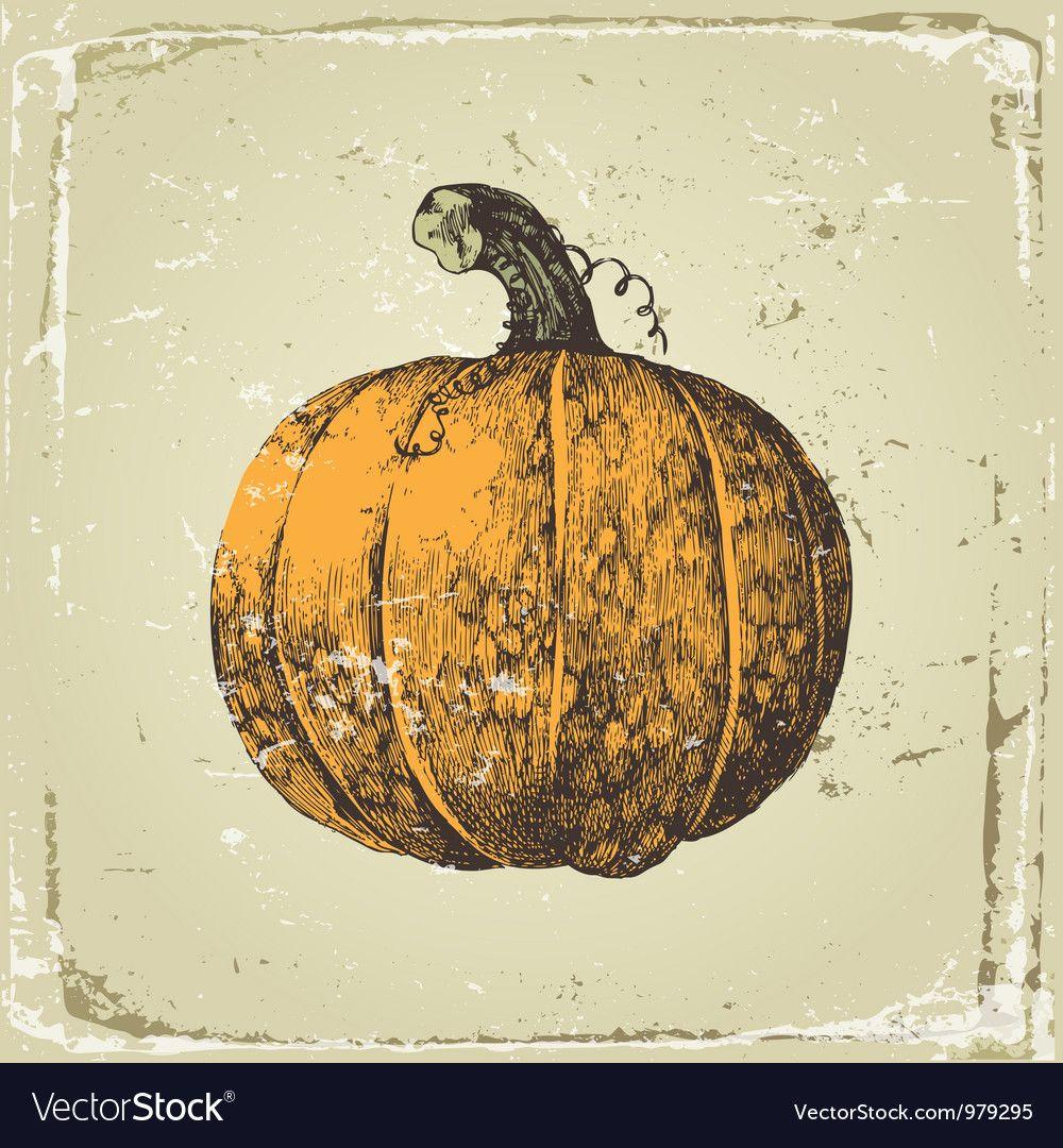Hand drawn pumpkin Royalty Free Vector Image VectorStock