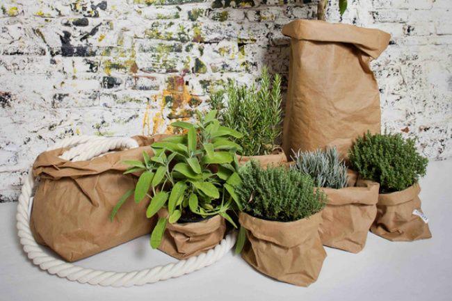 Uashmama, bolsas de papel lavables para tus plantas ...