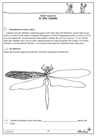 Die Libelle | Vorlagen | Pinterest | Grundschulen-kunst ...