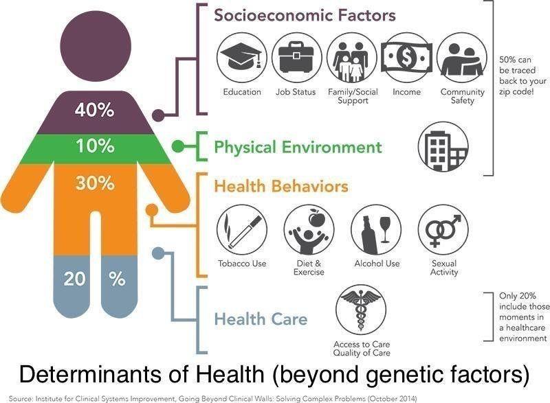 diet exercise social determinants of health