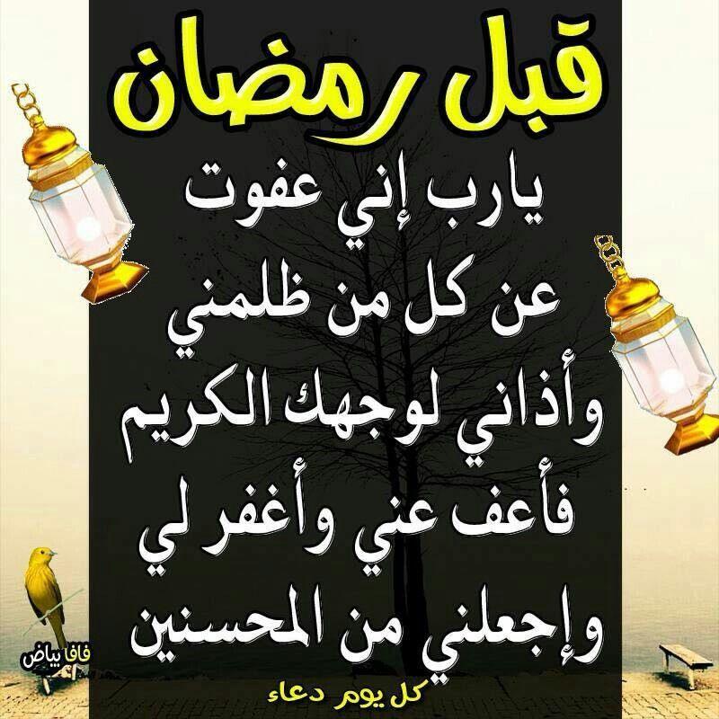 قبل رمضان Bee