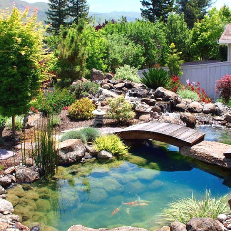 Awesome Koi Pond Projects You Can Build To Complete Your ...