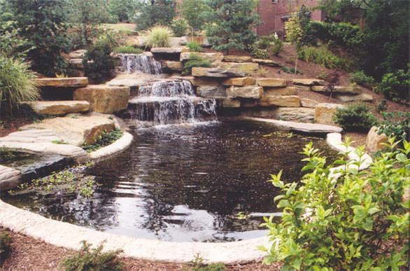 Gallery Dream Pools Pool Landscaping Outdoor