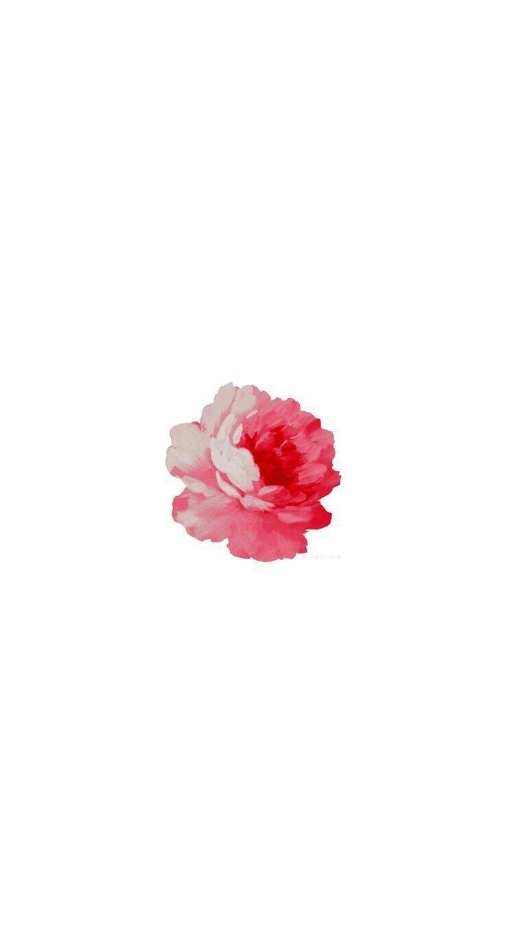 Pin By Dana Silvoza On Iphone 用壁紙 Spring Wallpaper Simple