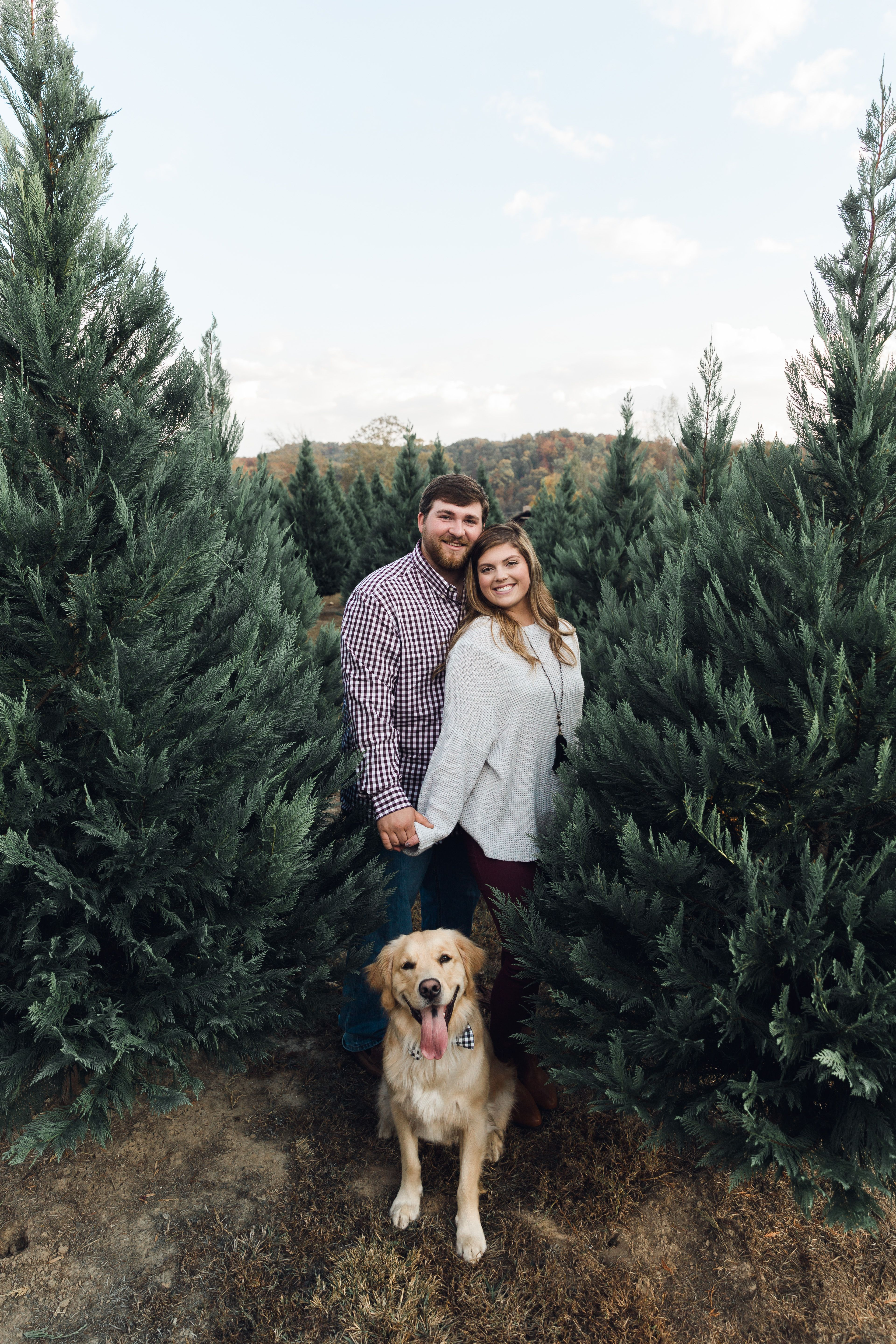 Christmas Tree Farm Engagement Session Christmastreefarm Engagementpictures Christmas Tree Farm Photos Christmas Couple Pictures Christmas Tree Photography