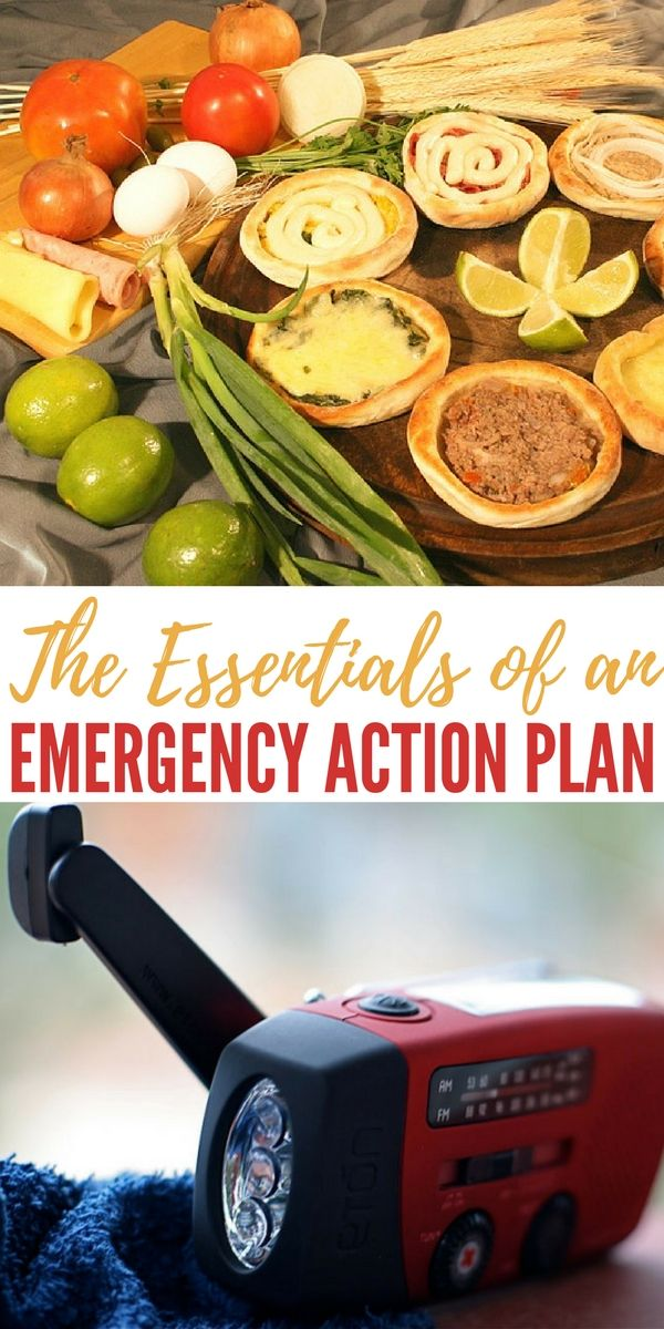 The Essentials of an Emergency Action Plan - When disaster strikes - emergency action plan