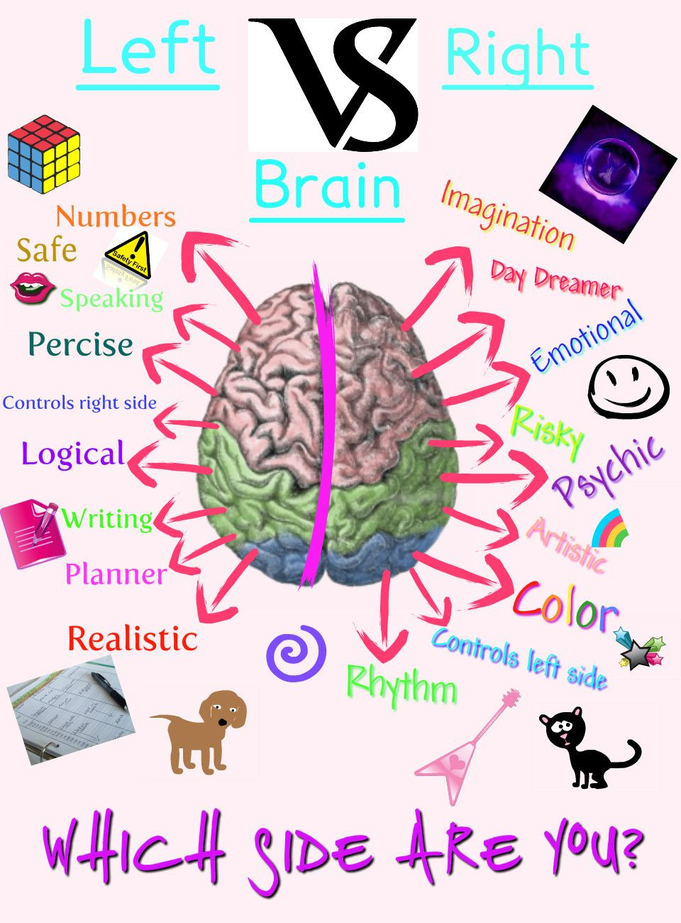 Left Brain vs. Right Brain: Let\'s Get Ready to RUMMBBLLEE! | Bipolar ...