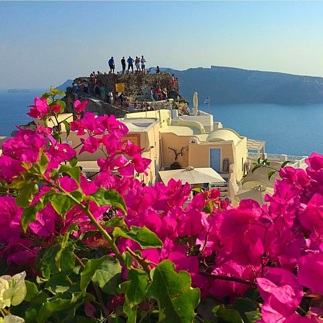 "dashne83 on Instagram: "" Good Morning My friends   Oia - Santorini - Greece """