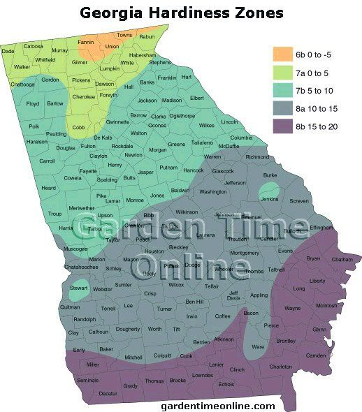 bde53190bfd533c3fd14bea7206e15ae - What Zone Is Georgia For Gardening