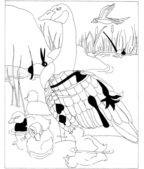 Answer: May have to print coloring page from Pinterest