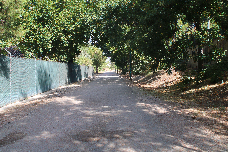 justo en el paso a nivel de la carretera de Santiago de Calatrava, en Martos