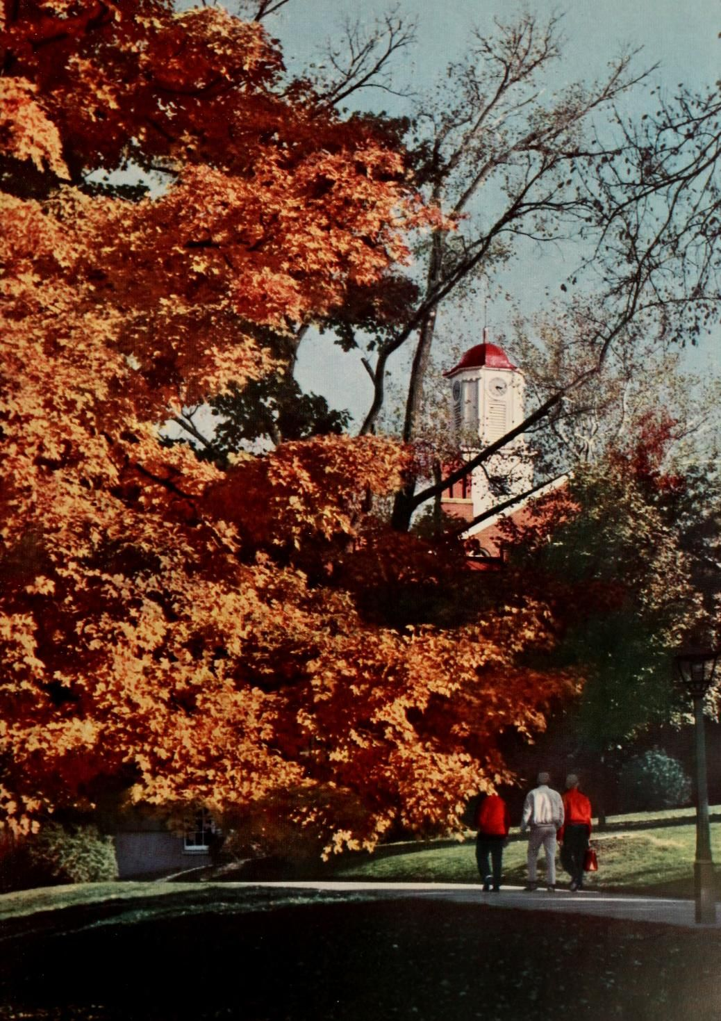 Athena yearbook 1960 a tree near cutler hall sports