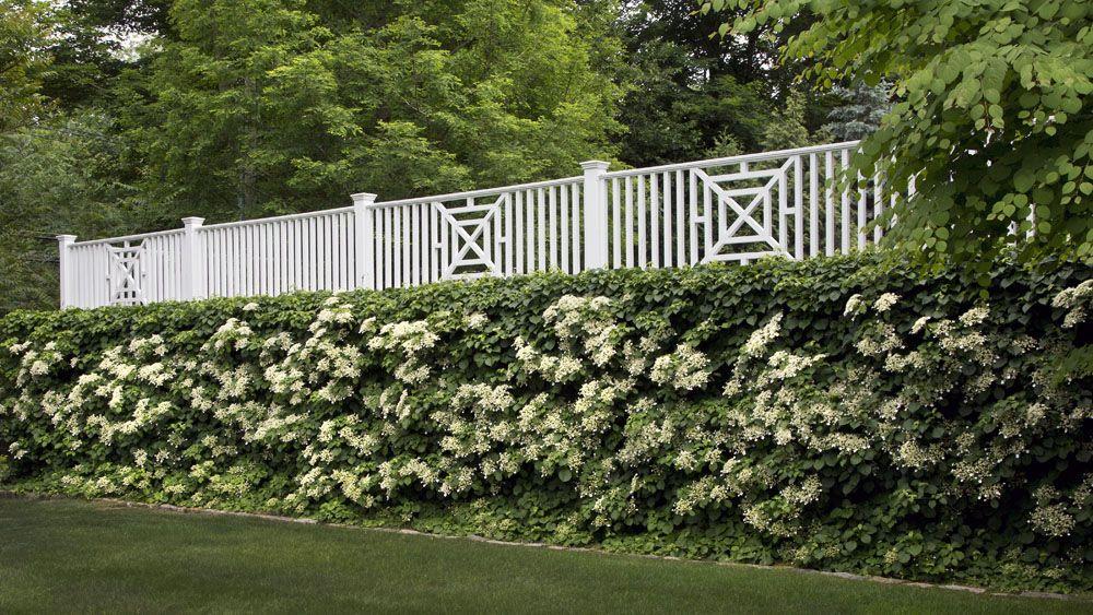 Westover Portfolio Shadow Brook Parkway Gardens and